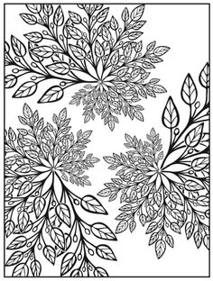 Creative Haven Nature Fractuals Coloring Book, Dover Publications
