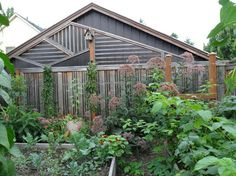 Edible Garden | A blank wall is given a facelift with this whimsical structure at the back of a vegetable garden. Asymetrical lines create interest. Structure by Apogee Landscape. Design by Amy Whitworth.