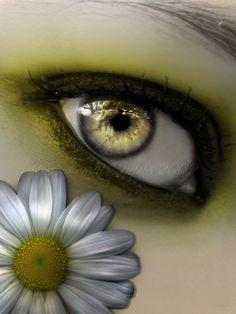 Daisy by `Emerald-Depths on deviantART
