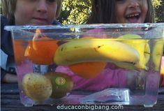 experimento de flota o se hunde con frutas - Actividades de Kindergarten Para Niños 2020 Science Crafts, Science Experiments Kids, Science For Kids, Montessori Science, Preschool, Diy Crafts For Kids, Banana, Fruit, Child Care