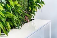 Detail van kantoor GGZ Purmerend. Verwerkte producten: Duropal en Thermopal. Door Van Assem Interieurbouw. Fotografie door BMV.Foto - Marijn van 't Veer.