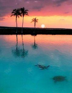 Any tropical island will do