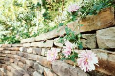 Cascading Pinks is a signed Fine Art Print by Joy Neasley. Cascading Pinks reminds me of family and a day at the Dallas Arboretum visiting my