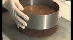 Karaorman Pastası Püf Noktaları - karaorman pastası püf noktaları nasıl yapılır ? karaorman pastası püf noktaları tarifi videolu anlatımı, karaorman pastası püf noktaları yapılışı, karaorman pastası püf noktaları yapımı, malzemeler ve diğer binlerce pratik yemek tarifleri MagKadın sayfamı Dog Bowls, Youtube, Youtubers, Youtube Movies