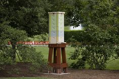 white house bees - Google Search