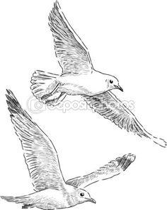 Gaviotas vuela — Vector de stock © chronicler101 #43424317