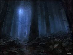 Forests are scary places at night.