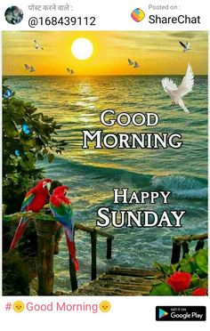 Lovely Good Morning Images, Good Morning Happy Sunday, Good Morning Gif, Good Morning Greetings, Good Morning Quotes, Weekend Days, Days Of Week, Stay Positive Quotes, Blessings