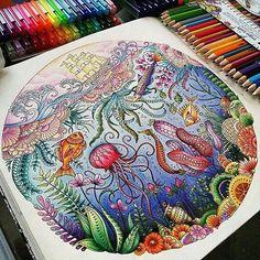 Olá Pessoal, to repostando aqui um dos meus coloridos preferidos e aproveitar…