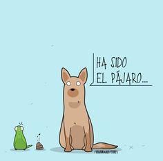 Art by Peromiraqueperros Cosas que pasan cuando tienes mascotas #perros #perritos #mascotas #adorable #bonito #regalos #gift #tiendademascotas #perruno #regalomascotas #petlovers #can #canino #peludos #divertido #taza #animales #peromiraqueperros