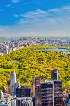 Central Park, New York ¦ www.expedia.nl