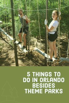 Check out 5 fun things to do in Orlando besides the theme parks.
