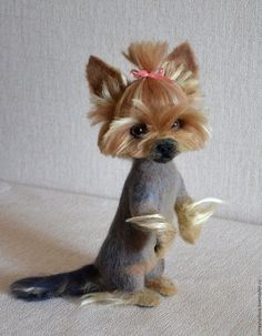 Yorkie haircut Dogs Yorkie hairstyles, Dog breeds that