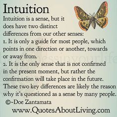 ∆ Intuition...Quotes About Living - Doe Zantamata: Intuition - How it's different than other senses