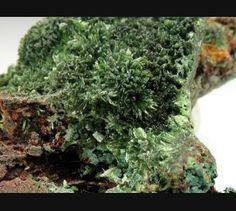 Olivenite and Micro Torbernite, Cornwall, England