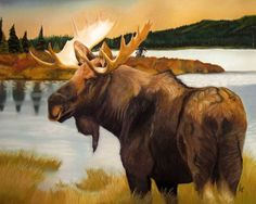 """""""Fields of Gold"""" is a beautiful pastel moose drawing. The wildlife fine art print is 11in x 14in size (27.94cm x 35.56cm). The bull moose is standing in front of an Alaskan river bank, accentuated from a background of tree filled mountains and a vibrant hued autumn island. This fine art print would make a wonderful addition to any cabin, lodge or hunter's home. An awesome piece for rustic wall decor. Great Gift for the hunter of the family!"""