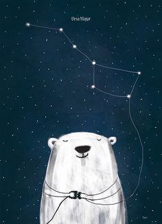 Polar bear night stars