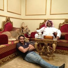 And then chills with the full-grown lions inside. | The Rich Guys With Lions Of Instagram