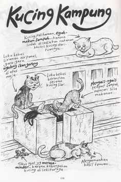 Kucing Kampung (Benny and Mice)