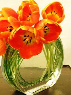 unique tulip arrangement