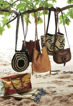Bags hanging from branch