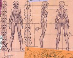 Turn Around By Master J Scott Campbell Gestures Characters on Mathieu Reynes Masters Of Anatomy Inspiring D Art Dir Female Drawing, Human Drawing, Body Drawing, Drawing Poses, Drawing Lessons, Girl Anatomy, Anatomy Art, Anatomy Drawing, Character Model Sheet