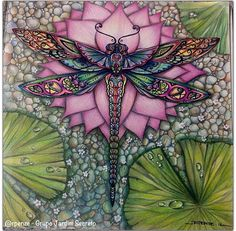 Fabulous Drawing On Creativity Ideas. Captivating Drawing On Creativity Ideas. Dragonfly Art, Dragonfly Tattoo, Dragonfly Drawing, Adult Coloring, Coloring Books, Coloring Pages, Colouring Techniques, Colored Pencils, Illustration