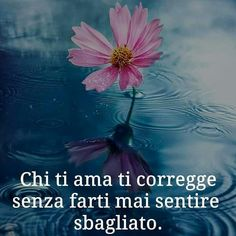 **************Who loves you corrects you without ever making you feel wrong V Quote, Artemisia Gentileschi, Spiritual Inspiration, Wise Quotes, Kind Words, Make A Wish, Life Is Beautiful, Positive Vibes, Favorite Quotes