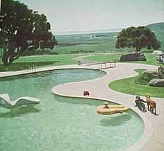 pool / mid century modern landscape design