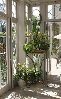 I like that this table allows another level for plants without blocking the view of plants on the floor....(corner of sunroom)
