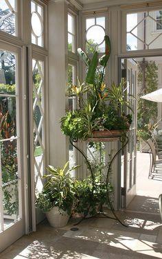 decorate a corner of the sunroom