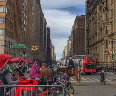 I have been wanting to try biking in New York City for a while but it always seemed to be too daunting. The cars, the crowds and the intensity of it all kept my feet firmly planted on the city sidewalks during my previous visits to the Big Apple. This all changed during my most recent stay in the city. I decided to try out...