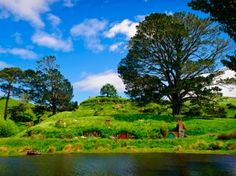 """""""The Hobbit Trilogy"""" Inspired Trip w/ Air from Air New Zealand Vacations. Price/Person Based on Double Occupancy Air New Zealand, Der Hobbit Film, Auckland Activities, Desolation Of Smaug, An Unexpected Journey, All Nature, To Infinity And Beyond, Filming Locations, Middle Earth"""