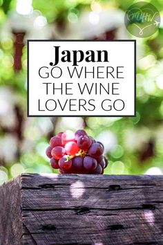 Japan Wine - Why you need to visit Japanese vineyards! Yamanashi, Japanese Wine, Rice Wine, Visit Japan, Nagano, Fruit, Wineries, Places, Wine Cellars