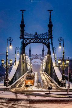 Budapest is the capital of Hungary ~ Budapest Magyarország fővárosa Cool Places To Visit, Places To Travel, 4k Photography, Liberty Bridge, Paris Landmarks, Budapest Things To Do In, Budapest Travel, Hungary Travel, Jolie Photo