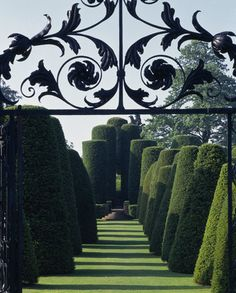 The eighteenth century gate leading to the avenue of giant yews at Packwood House.