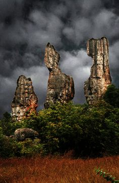 Stone forest at Kunming Eastern China.