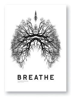 Breathe by Studio8 Design.