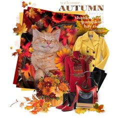 happy autumn cat by sagramora on Polyvore featuring мода, Gotha, Old Navy, Toga, Coach and Avoca