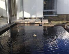 Cedro Verde, La compañía del agua le da armonía al ambiente. #DreamHouse #architecture #water