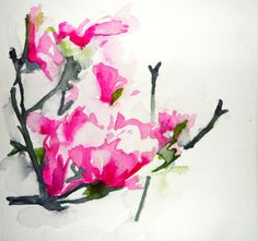 "Saatchi Online Artist: Karin Johannesson; Watercolor, 2013, Painting ""Magnolia study"""
