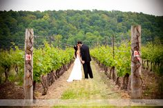 kissing in the vineyard  Photo by Boston Avenue Photo Co.
