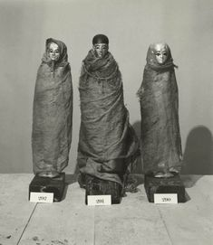 *EGYPT ~ The Discovery of the Tomb of Tutankhamun: The Harry Burton Photographs   The Oriental Institute of the University of Chicago