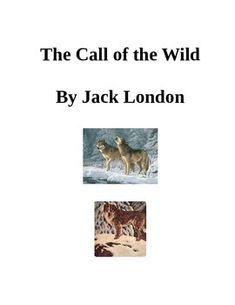 call of the wild chapters 1 2 The call of the wild jack london the emc masterpiece series access editions series editor robert d shepherd emc/paradigm publishing st paul, minnesota.