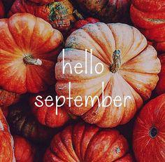 "crisp-air-falling-leaves: "" on We Heart It. Autumn Aesthetic, Aesthetic Pics, Autumn Cozy, Autumn Feeling, Autumn Art, October Country, Happy Fall Y'all, Hello Autumn, Fall Harvest"