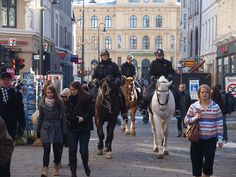 Police horses in the lower part of the main street