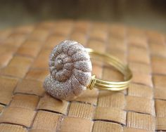 Nautilus Button Ring  Just For Fun  Made to Order  by ShoreDebris, $8.00