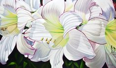 Faery Dance by Brian Wyers, Acrylic on Canvas, Painting Big Flowers, Faeries, Arts And Crafts, Lily, Oil Paintings, Canvas, Gallery, Floral, Plants