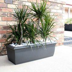 Troughs - Eco Green Office Plants Inside Garden, Roof Terraces, Green Office, Eco Green, Office Plants, Balcony Garden, Garden Ideas, Planter Pots, Patio