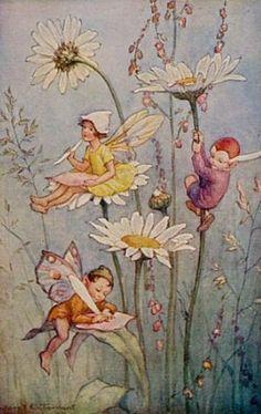 M.W. Tarrant1 - Elfen & Boeken